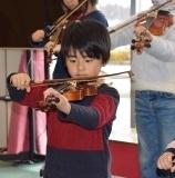 バイオリン (44)