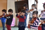 バイオリン (49)