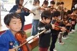 バイオリン (51)