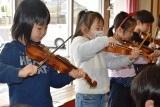 バイオリン (52)