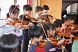 バイオリン (53)