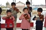 バイオリン (55)
