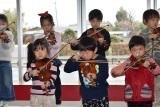 バイオリン (56)