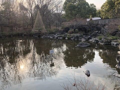 府中の森公園-12