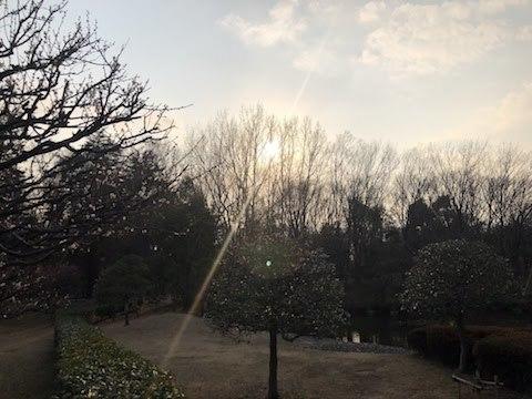 府中の森公園-26