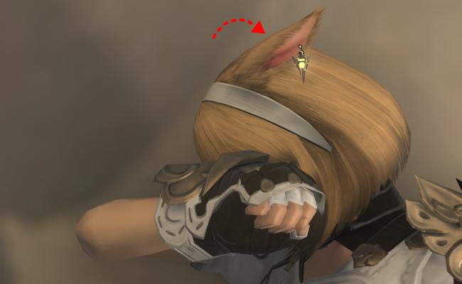 ミコッテの耳5