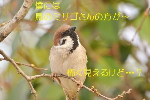 140_20190403214456ede.jpg