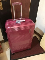 スーツケース大190305