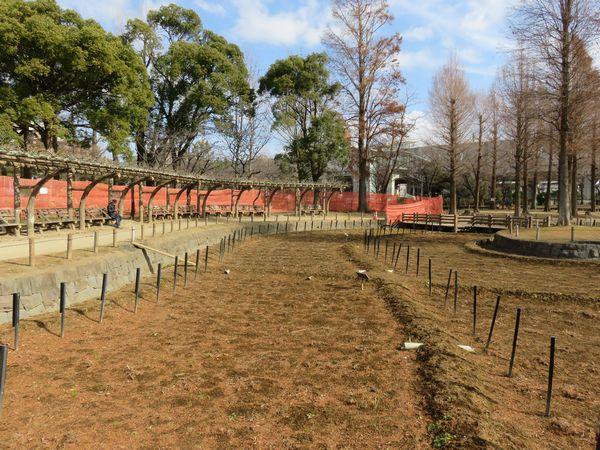 しょうぶ沼公園内で進められている園路整地工事