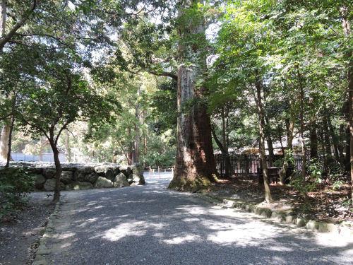 190326toyouke19.jpg