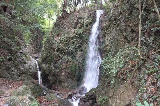 s-㉑鳴谷滝