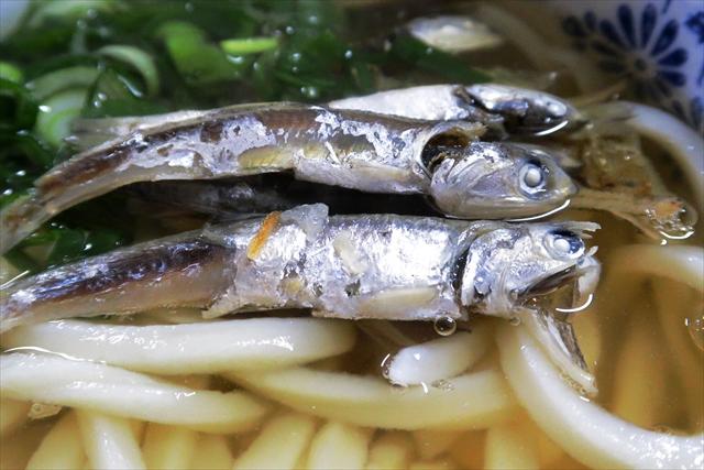 1900323-宮川製麺所-16-S