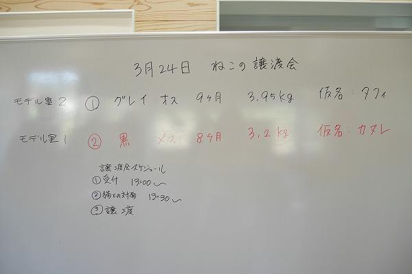 20190324 譲渡会_190325_0001