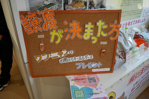 20190324 譲渡会_190325_0008