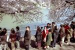 3.千鳥が渕-06N 03(皇居・九段 NP)q