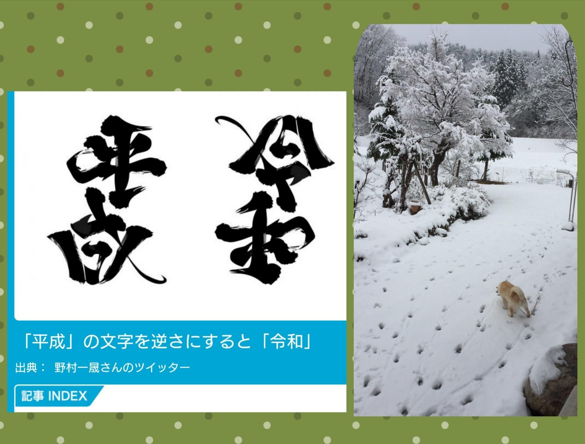 moblog_2459e4b8.jpg