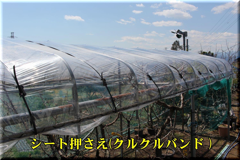 1house190403_004.jpg