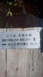 尾瀬_015