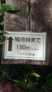 尾瀬_024