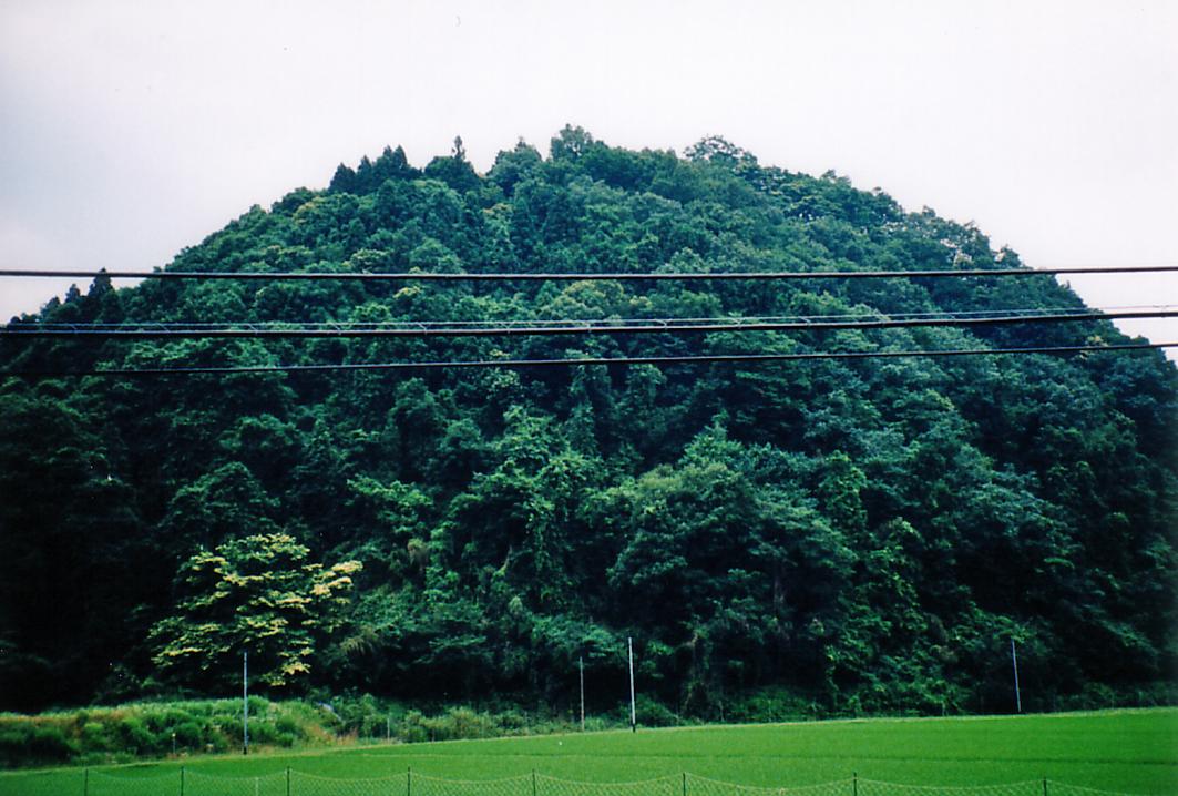 福原城 遠景