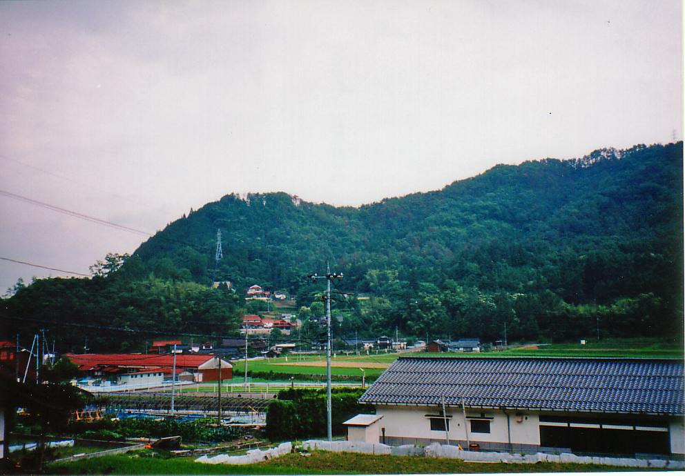 猿掛城 遠景