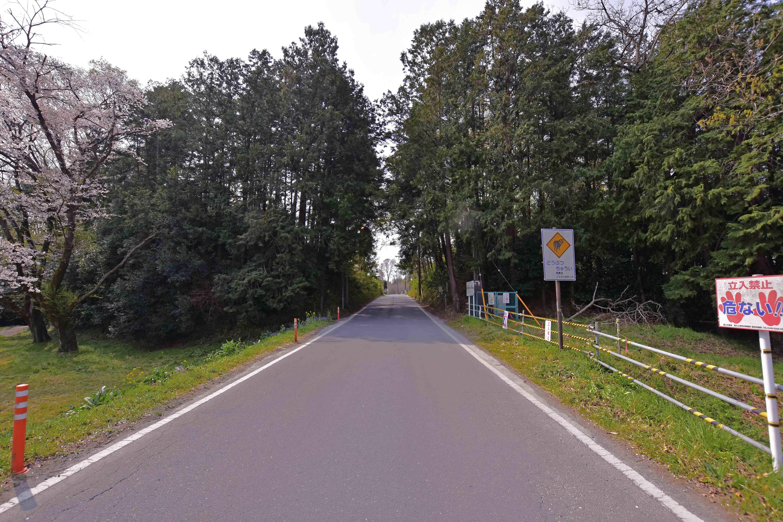 石戸城 堤から道路が貫通