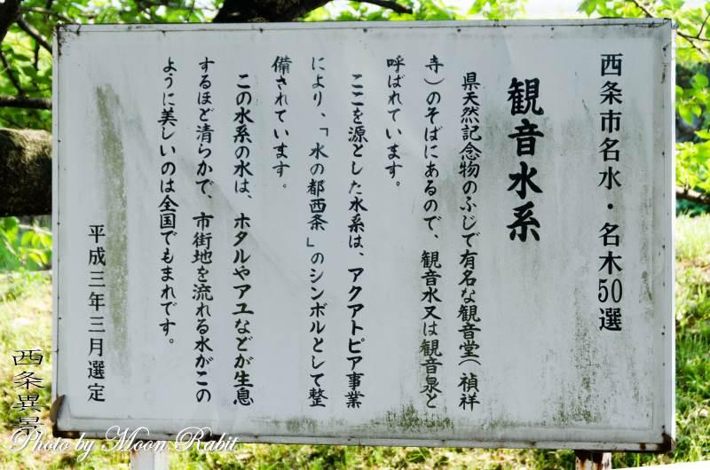 観音泉(観音水)とツツジ 愛媛県西条市上喜多川