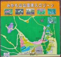 mikamo190317-201.jpg