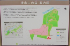 shimizuyama190324-201.jpg
