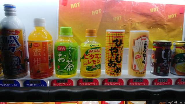 DSC_0010hiyashi.jpg