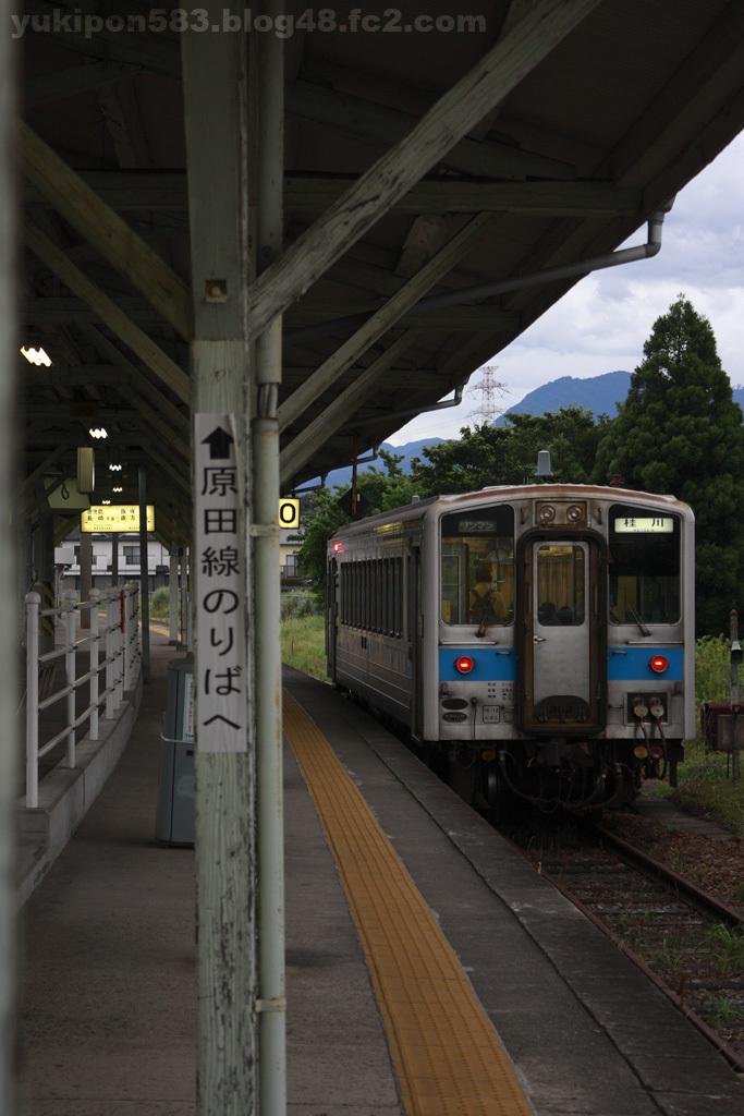 2010081001.jpg