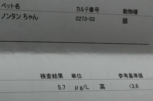 2019030505.jpg